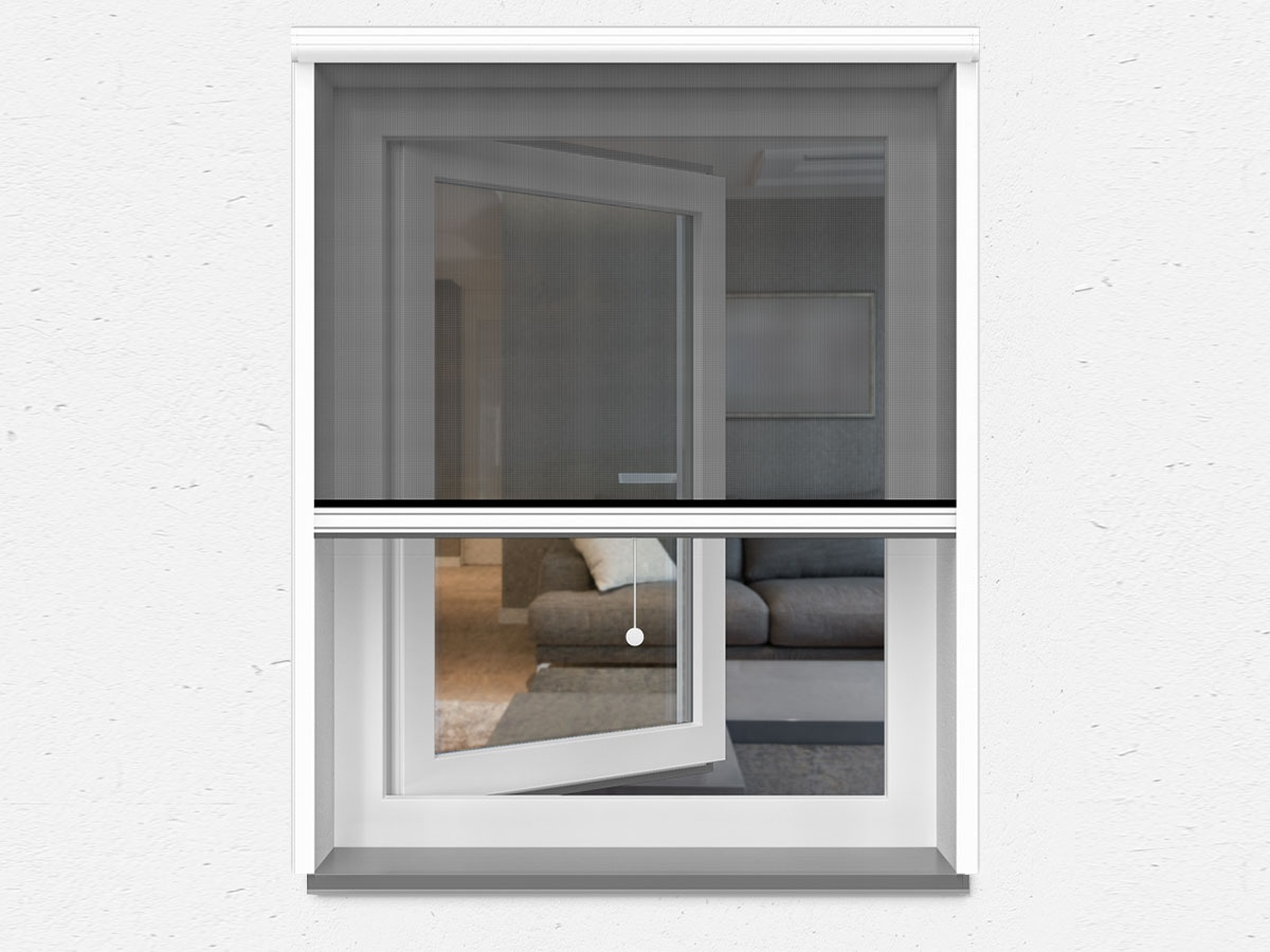 Top Fliegengitter-Fenster » Insektenschutz-Fenster günstig kaufen XJ43
