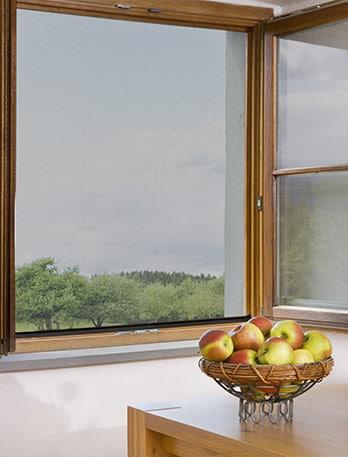 pollenschutzgitter pollenschutzgitter mit rahmen kaufen. Black Bedroom Furniture Sets. Home Design Ideas