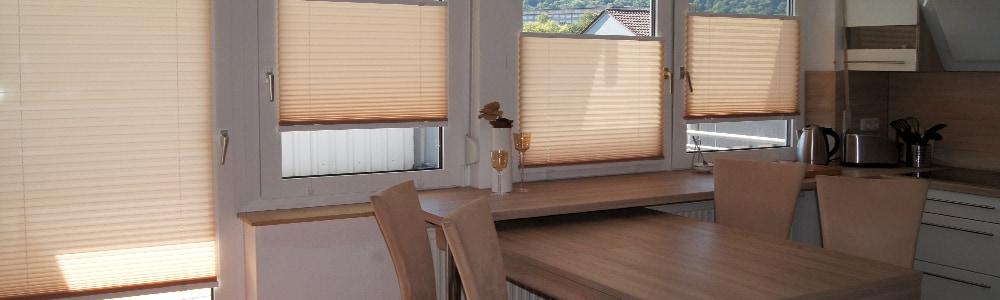 easyfix plissee kaufen easy plissee ohne bohrmaschine. Black Bedroom Furniture Sets. Home Design Ideas